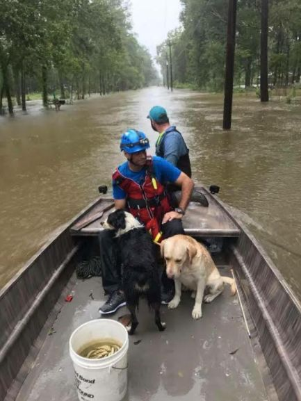 Volunteers for theIslamic Society of Greater Houstonrescue dogs trapped in Hurricane