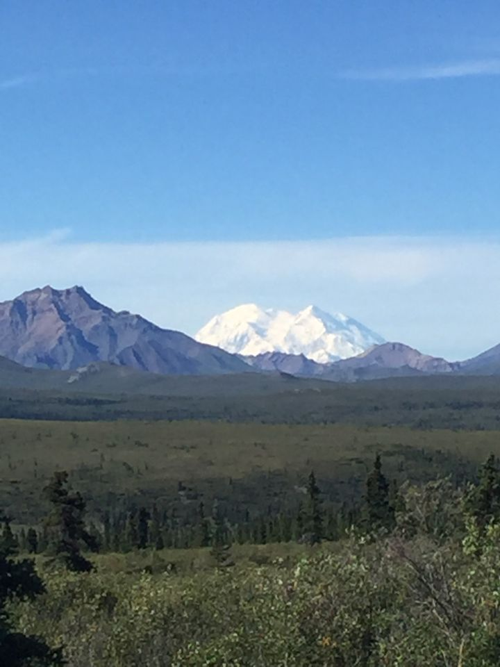 Only 30 percent of visitors to Denali actually see the mountain.