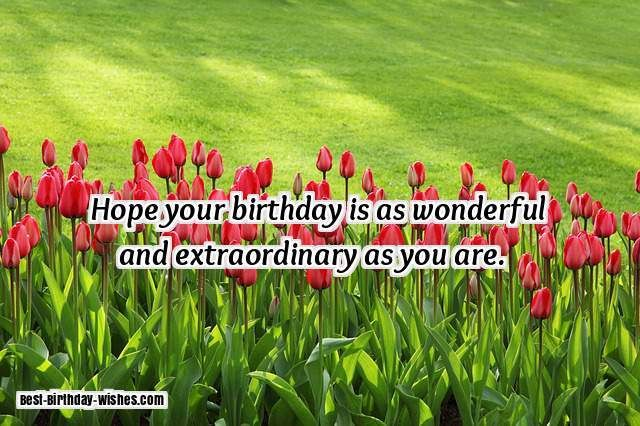 I Want To Wish You All The Love And Happiness In World Of Which Deserve Happy Birthday My Friend