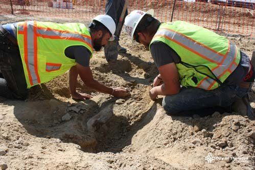 Construction crews unearth a dinosaur skeleton in Colorado