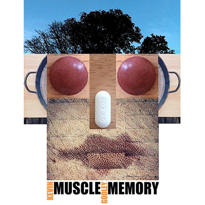 <p>Kevin Godley / <em>Muscle Memory</em></p>