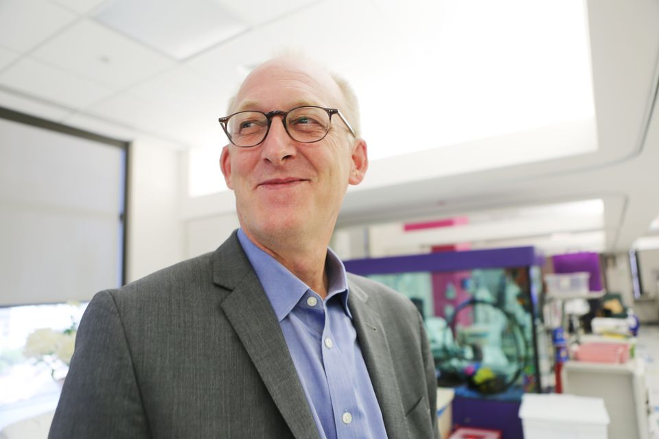 Dr. Michael Braun, chief of the pediatric nephrology center at Texas Children's Hospital, was...