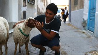 TUNIS, TUNISIA - AUGUST 31: Tunisian boy cuddles their livestock after they bought it from livestock market on the eve of Muslim sacrificial festival 'Eid al-Adha' in Tunis, Tunisia on August 31, 2017. Eid al-Adha, also called as Feast of the Sacrifice, the second of two religious main holidays celebrated by Muslims worldwide each year.      (Photo by Yassine Gaidi/Anadolu Agency/Getty Images)