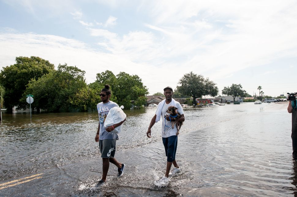 Jared Clark, 19, and Charles Clark, 50,  from Port Arthur, walk out of the flood zone with their dog, Tia, after being r