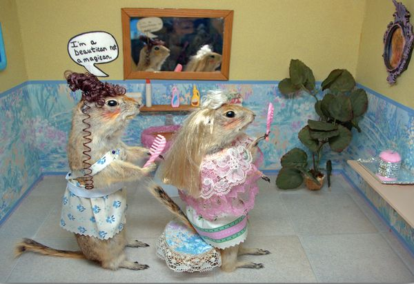 The Torrington Gopher Hole Museum in Alberta, Canada, features the history of the town using dozens of stuffed gophers.