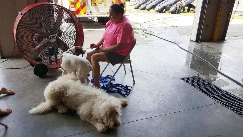 Morgan Peterson, of Vidor, sits with her dogs Fluffy and Cookie. Peterson took refuge at the Orange County firehouse when wat