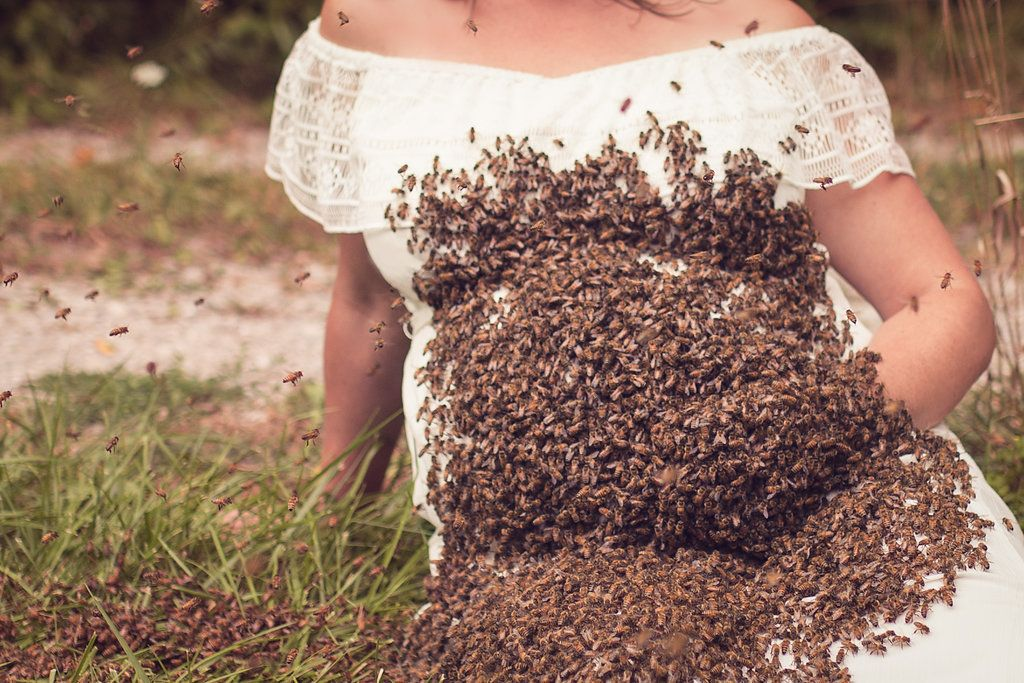 Mom poses for maternity photo with 20000 bees