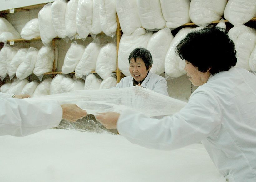 <em>China National Silk Museum, purportedly the largest silk museum in the world, in Hangzhou.</em>