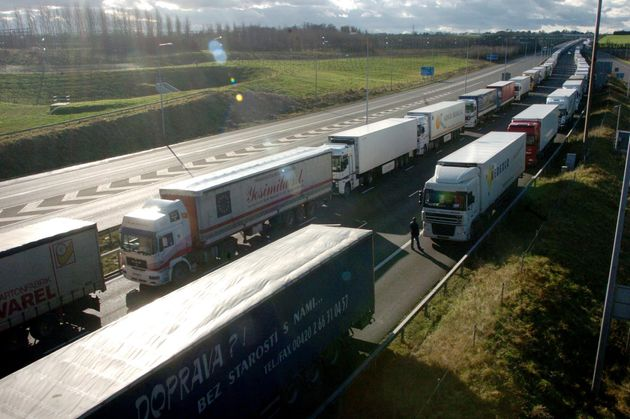 Mike Coupe said the strict border checks would have a 'detrimental affect in freshness' (lorries queueing...