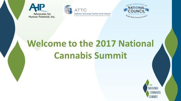 Marijuana commission chair confident in board