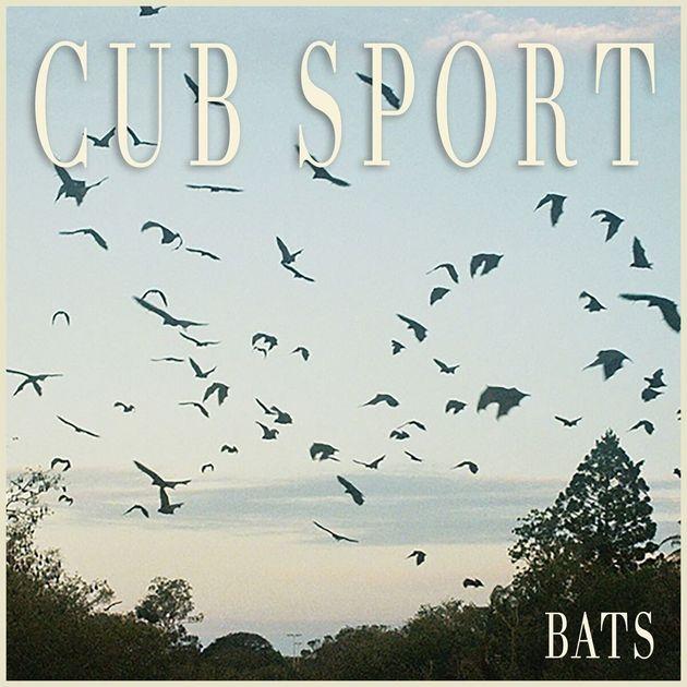 Cub Sport's second album,