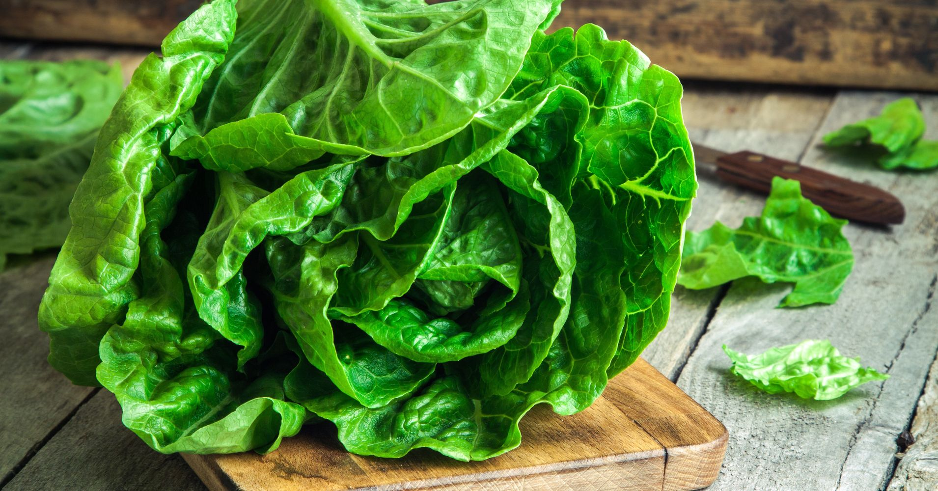 The Best Salad Greens Ranked By Nutrition Huffpost Life