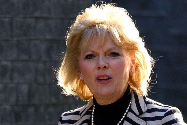 Tory MP Anna