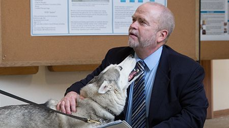 Pet volunteers, and their human counterparts, are improving the lives of patients with a variety of mental health diagnoses