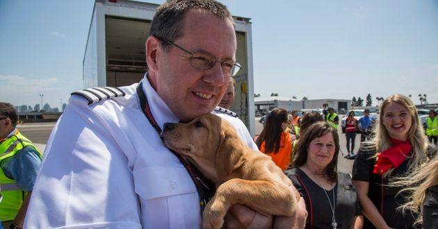 A pilot cradles a puppy during a rescue mission taking Harvey-hit animals to San