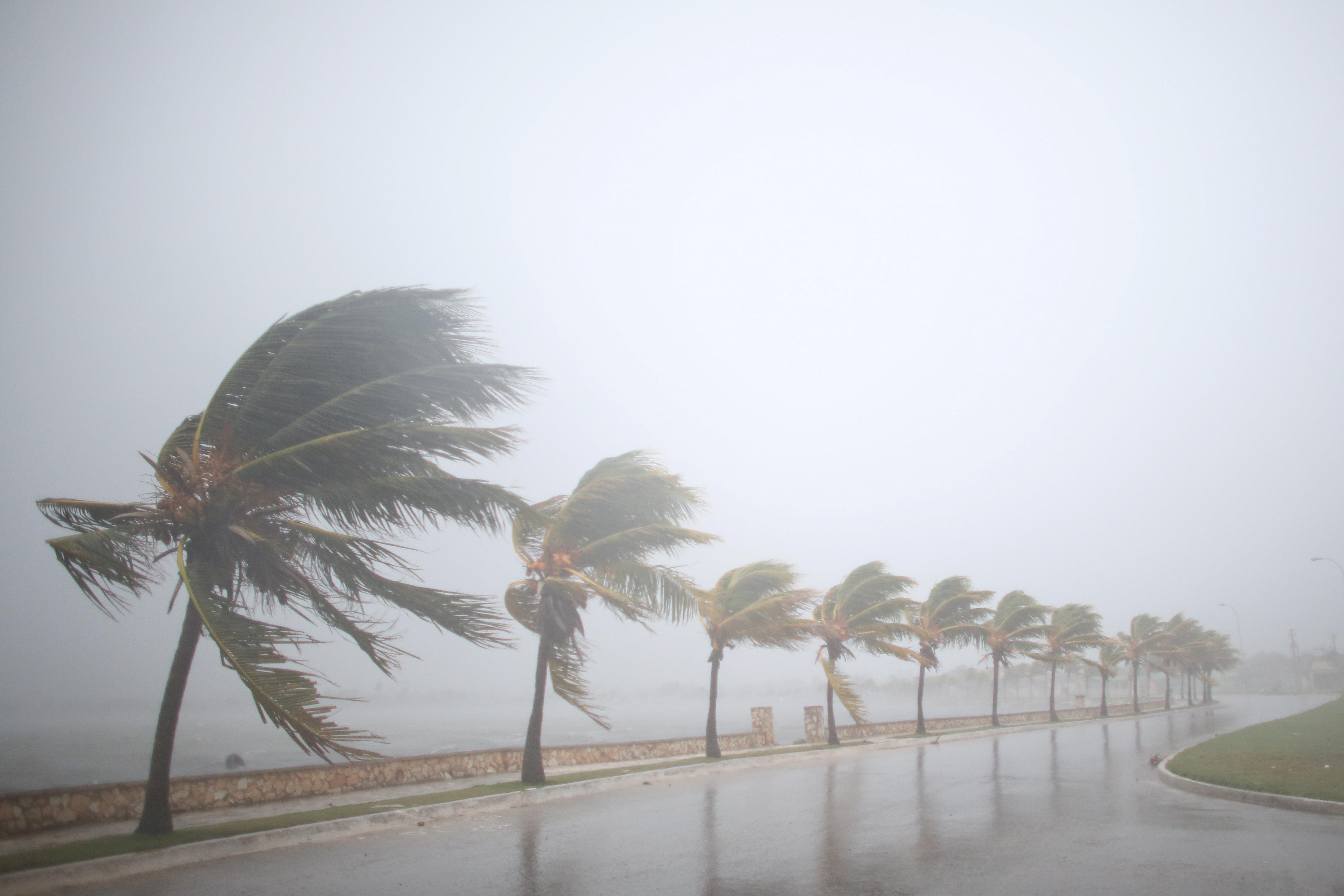 Heres How to Help Hurricane Irma Victims