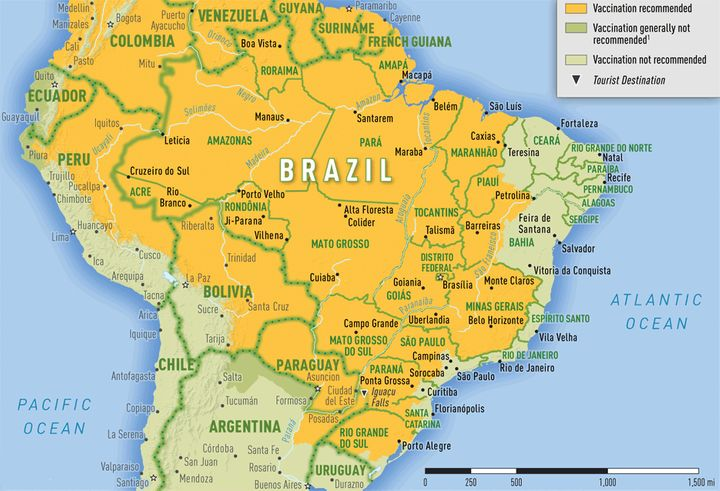 More than 98% of confirmed cases were found in the southeastern states of Brazil.
