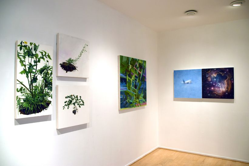 The Reality of Nature, installation view. L to R: Andrea Bersaglieri, Marie Thibeault, Samantha Fields