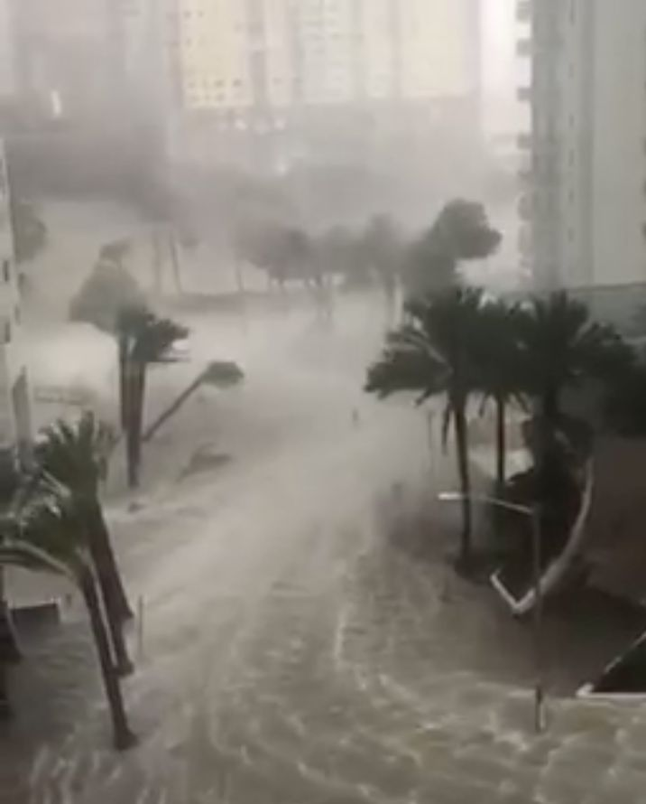 Water and hurricane-strength winds are seen whipping around palm trees in Southeast Florida on Sunday