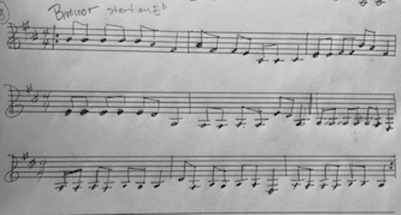 Notated Icaros written by Flicka that were sung by Angelita during ceremony
