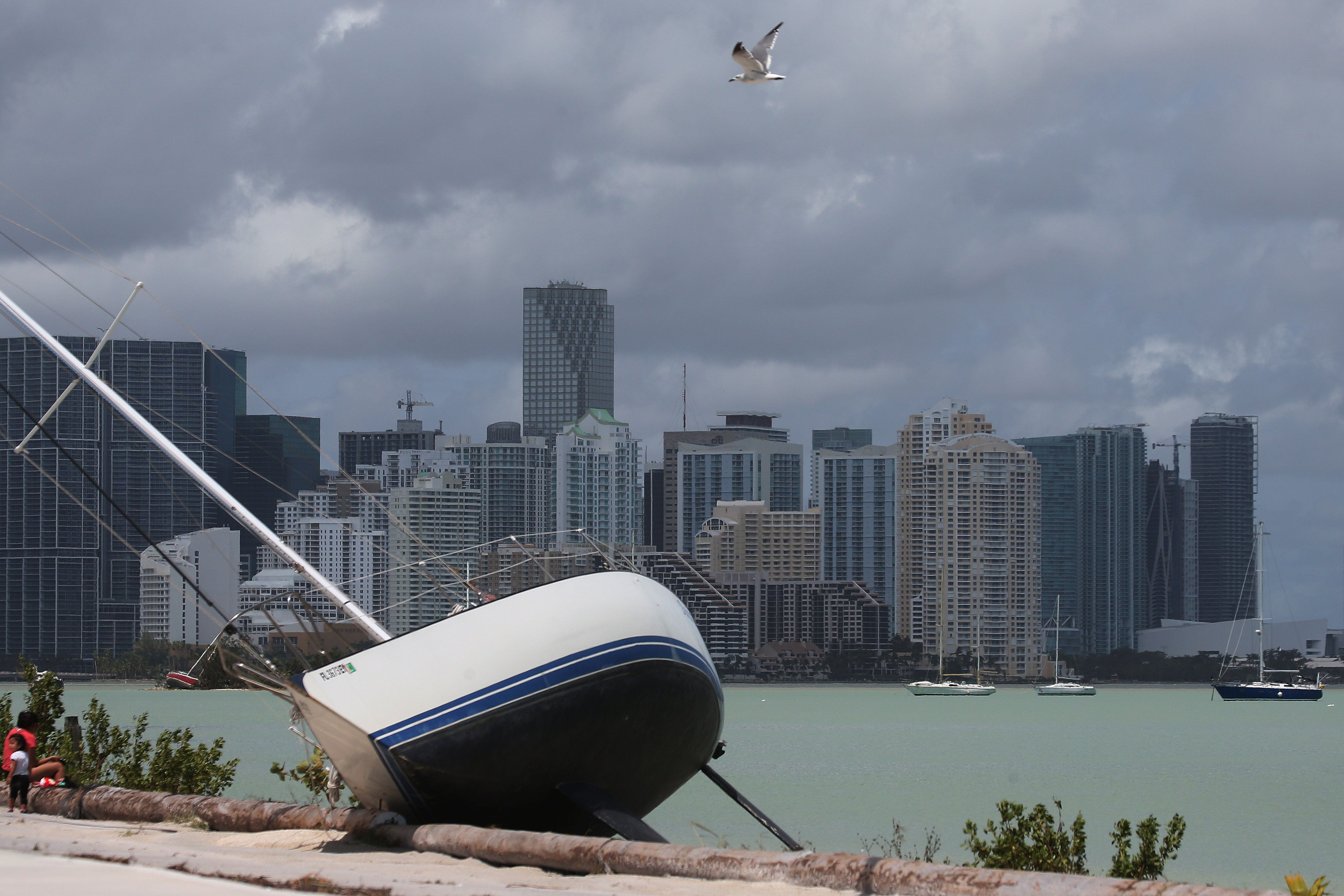 The Miami skyline is seen above a boat that went ashore after the passing of Hurricane Irma.