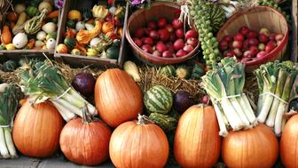 Pumpkins and gourds on display outdoors at farmer's market.