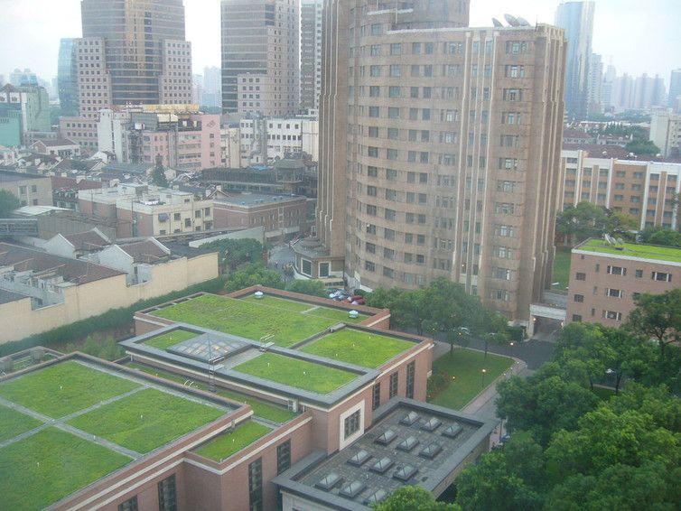 "Grassy rooftops in Shanghai. <a rel=""nofollow"" href=""https://www.flickr.com/photos/kafka4prez/41572747/"" target=""_blank"">kafk"