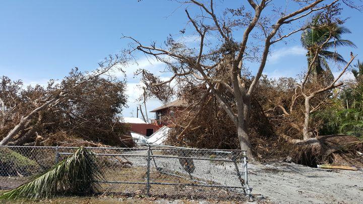 Renee Nadolink's home post-Irma.