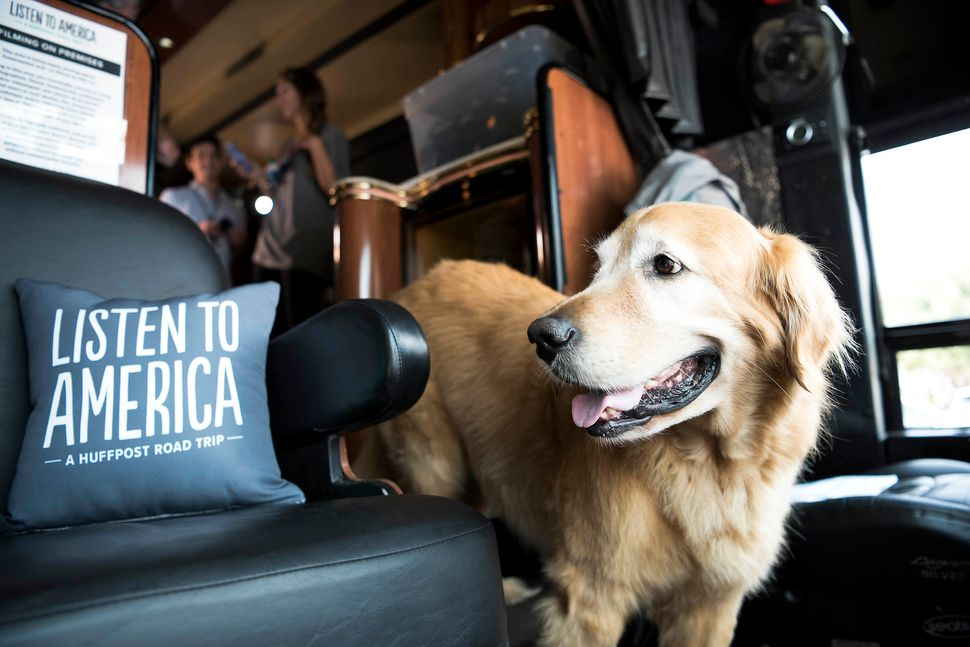 Bentley the dog visits HuffPost bus while in Oxford, Mississippi.