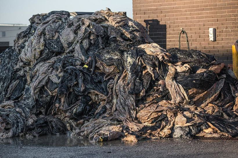 "<em>Huge stack of piled sheep and cow skins. Australia, 2017. </em><a rel=""nofollow"" href=""https://www.weanimals.org"" target="