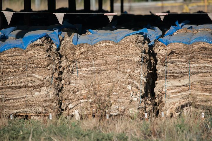 """<p>Hundreds of stacked sheep skins. Australia, 2017. <a href=""""http://www.weanimals.org/"""" target=""""_blank"""" role=""""link"""" rel=""""nofollow"""" data-ylk=""""subsec:paragraph;itc:0;cpos:__RAPID_INDEX__;pos:__RAPID_SUBINDEX__;elm:context_link"""">Jo-Anne McArthur / We Animals</a></p>"""