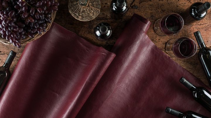 """<p>VEGEA leather made from grape marc. <a href=""""https://vegeacompany.com/"""" target=""""_blank"""" role=""""link"""" rel=""""nofollow"""" data-ylk=""""subsec:paragraph;itc:0;cpos:__RAPID_INDEX__;pos:__RAPID_SUBINDEX__;elm:context_link"""">vegeacompany.com</a></p>"""