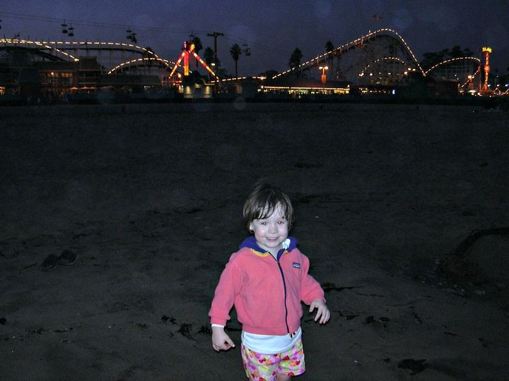 <p>Santa Cruz Boardwalk with the Giant Dipper in background</p>