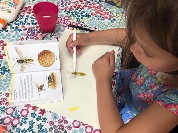 """""""Here's my little girl. Five years old and obsessed with bugs of all kinds. She especially likes spiders and will care for th"""