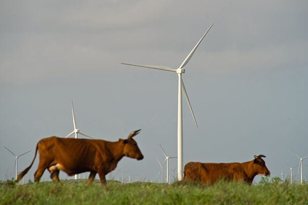 This Country Is Surprisingly Doing Very Well With Green