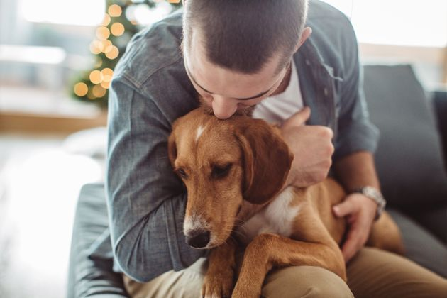 Your Mental Health Suffers When Your Pet Gets