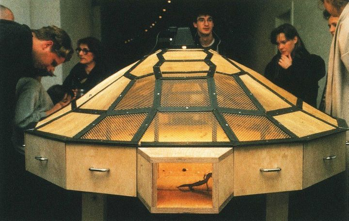 """A photo of a previous installation of """"Theater of the World,"""" included in a press release from the Guggenheim Museum."""