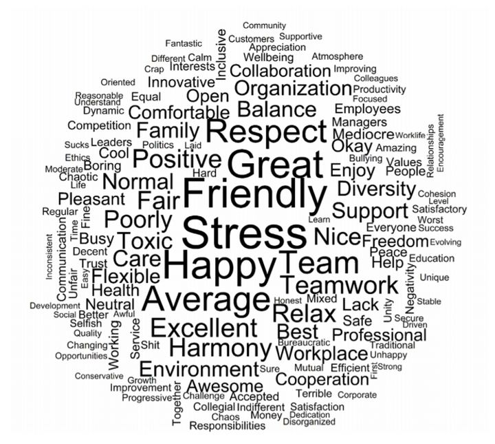 <p>Words employees use to describe their current organization's workplace culture. With stress being the most commonly used word.</p>