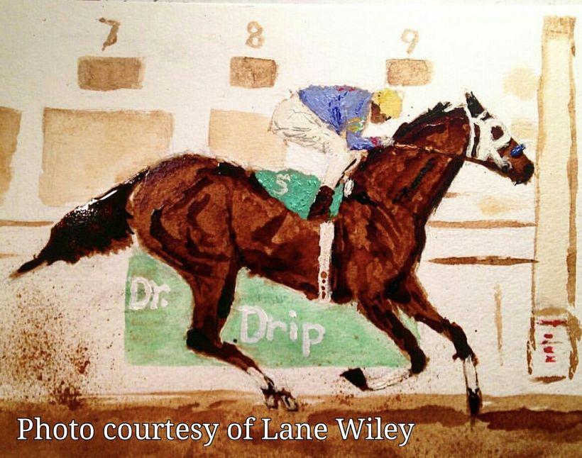 Multi Stakes Winner Dr. Drip