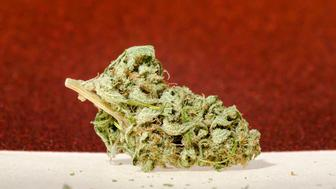 An indica dominate marijuana strain.