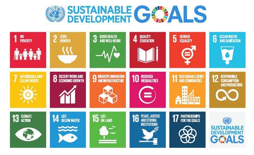 Sustainable Development Goals (SDGs)