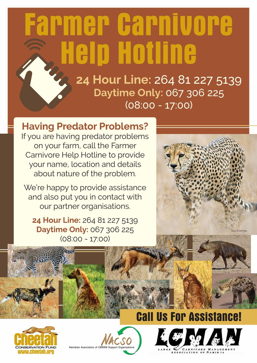 "Posters will be made available on CCF's site <a rel=""nofollow"" href=""https://www.cheetah.org"" target=""_blank"">www.cheetah.org"