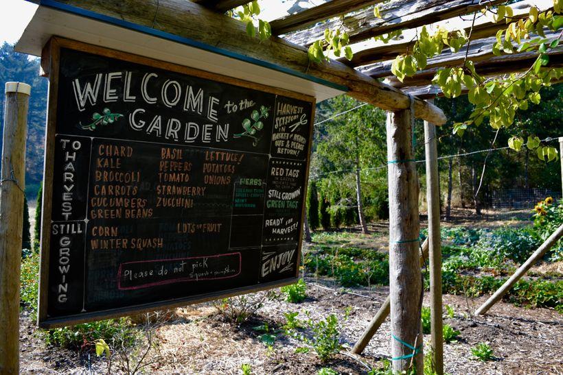 <em>The garden at Pebble Cove Farm</em>