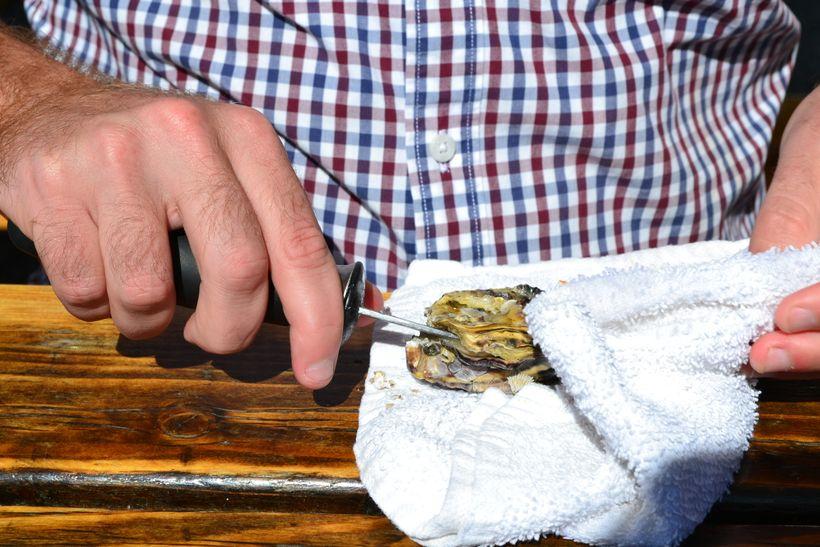 <em>Shucking oysters at Buckbay Shellfish Farm</em>