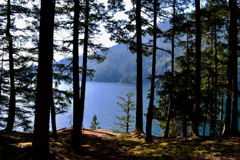 <em>Mountain Lake</em>