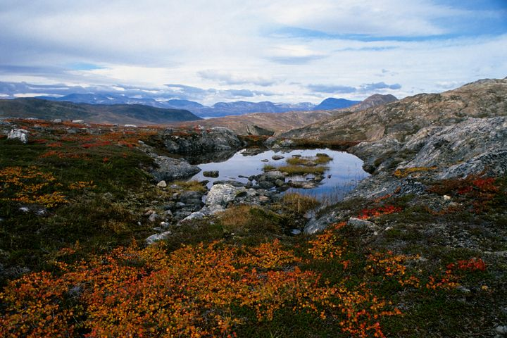 Saglek Fjord in northern Labrador, Canada. Scientistssaid they'd found what could be the oldest traces of life on Earth