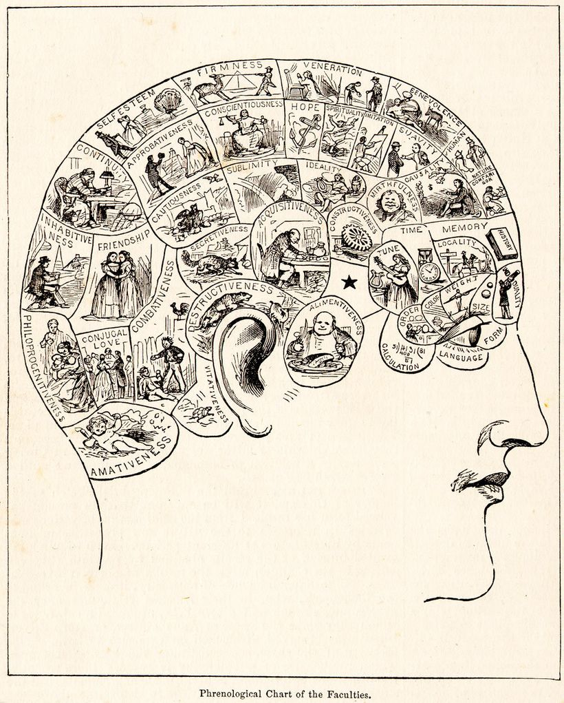 Phrenology was a pseudoscience used in the 19th century to justify assumptions about intelligence, character, among other tra