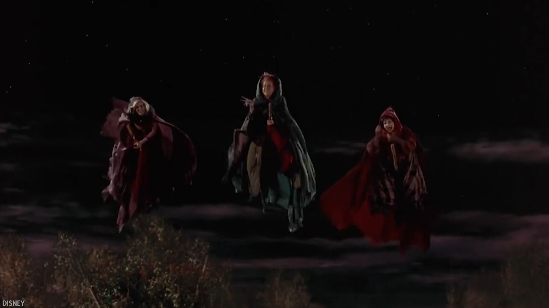 A Hocus Pocus remake is in the work