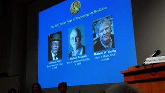 The names of Jeffrey C. Hall, Michael Rosbash and Michael W. Young are displayed during a news conference to announce the winner of the Nobel Prize in Physiology or Medicine 2017, in Stockholm, Sweden October 2, 2017.  TT News Agency/Jonas Ekstromer via REUTERS      ATTENTION EDITORS - THIS IMAGE WAS PROVIDED BY A THIRD PARTY. SWEDEN OUT. NO COMMERCIAL OR EDITORIAL SALES IN SWEDEN