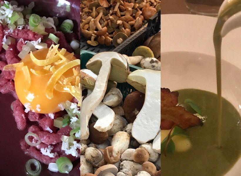 Tartare at Jadka, Wrocław; Seasonal mushrooms; Sorrel soup at A Nóż Widelec, Poznań